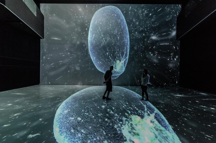 victoria_vesna-aquarium_noise_Bild-1