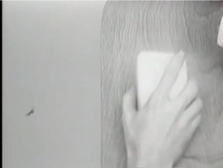 douglas_engelbart_the_mouse-1968
